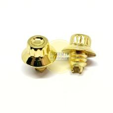 Dekoratīvas skrūves (kniedes) diskiem 010 GOLD